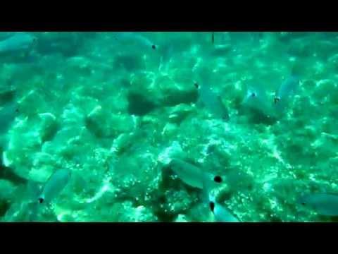 Cala Lliteres sota l'aigua