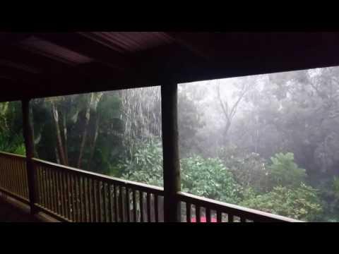 Brisbane Weather - Ex Tropical Cyclone Debbie at Samford