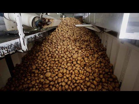 Farmers from Idaho look to export fresh potatoes to China