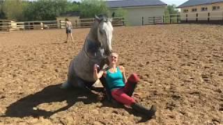 Верховая езда на лошади без седла и уздечки.