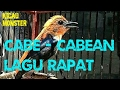 Burung Cabe Cabean Gacor Cecretan Rapat  Mp3 - Mp4 Download