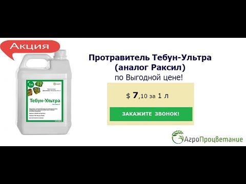 Проблемы с экспортом зерна в порту - YouTube
