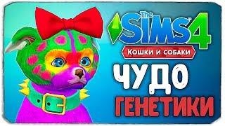 """ЧУДО ГЕНЕТИКИ, ТАК МЫ ЕЩЕ НЕ СМЕЯЛИСЬ! - The Sims 4 """"Кошки и Собаки"""""""
