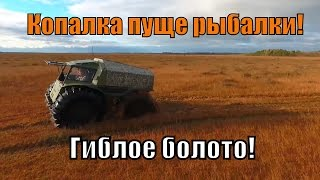 Болото Оршинский Мох, На Вездеходе Шерп, Коп, Рыбалка. Ч1