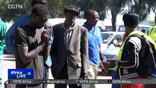 Zimbabwean farmers anxious over global lobby to ban crop