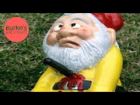 Sarcastic Gnomes