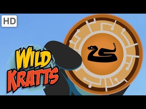 Wild Kratts - Best Season 2 Moments! (Part 4) | Kids Videos
