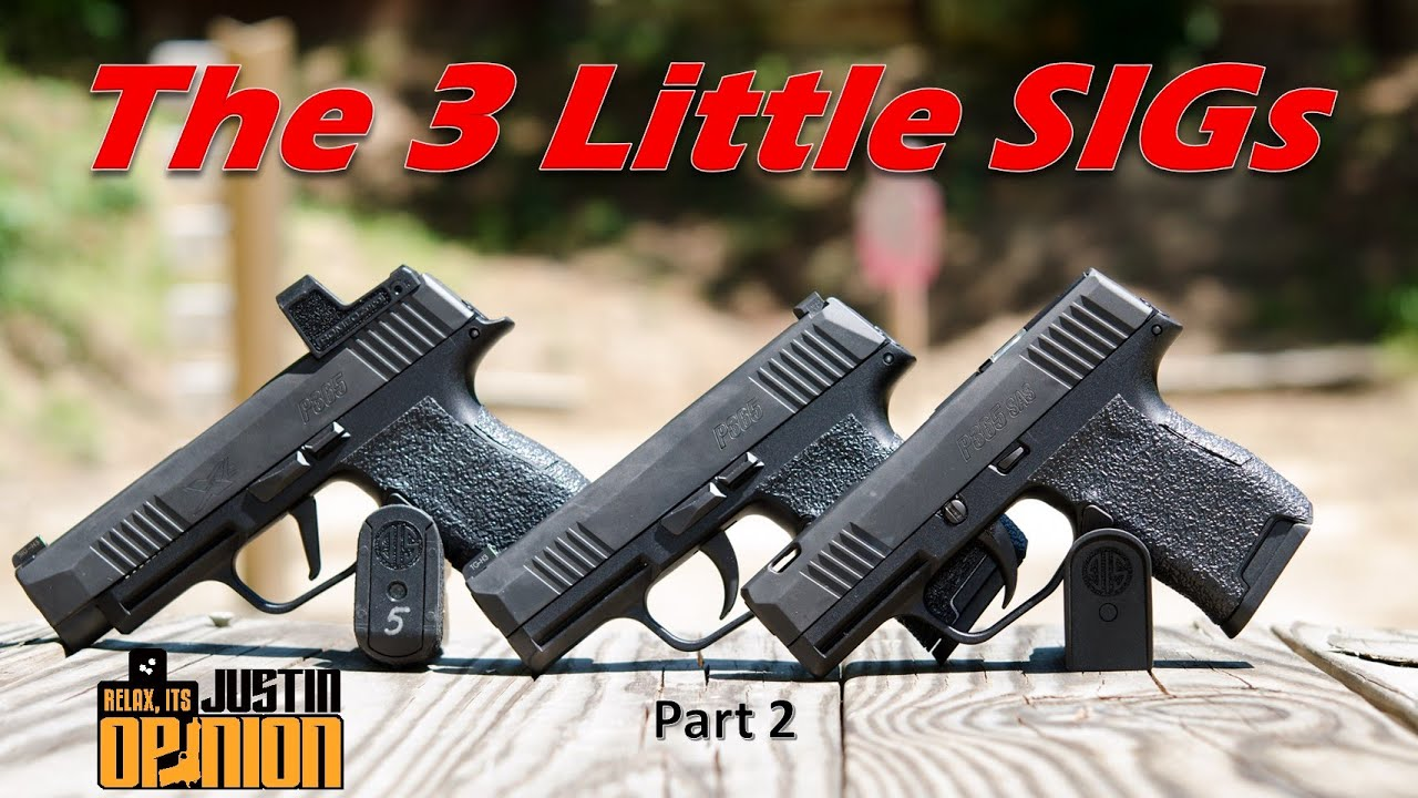 The 3 Little SIGs - Pt. 2: P365 Family