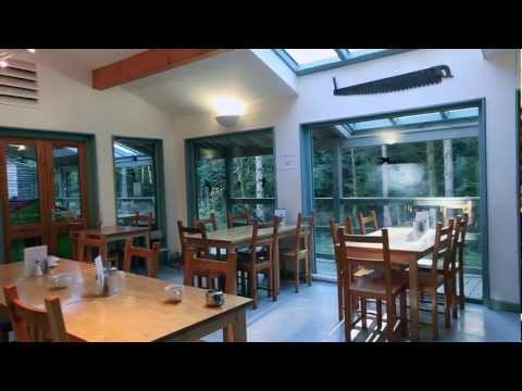 Greentraveller Video of Trallwm Forest Cottages, Powys, Wales
