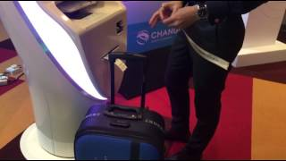 Automated Check-in Kiosks in Changi Airport's T4