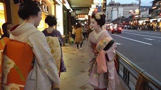 京都・祇園白川周辺 桜の下の巽橋を行く舞妓さん Maiko under cherry blossoms at Gion-Shirakawa (river), Kyoto