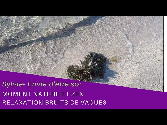 Moment Nature et Zen- Bruit des vagues