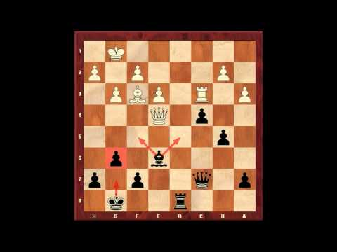 Pawn Majority on the Queen-side. Capablanca. Eugene Grinis. Chess