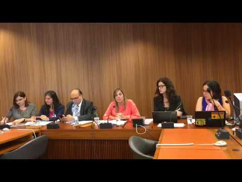 Women Challenging Corporate Power, side event Human Rights Council 35th Session