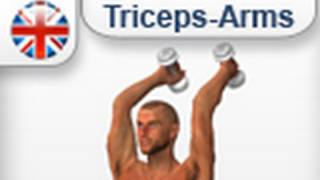 Triceps Exercises :  Extensions