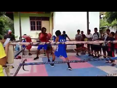 Download Boxing Amatir, sparring four