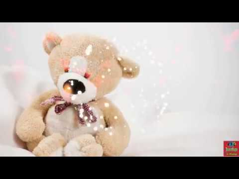 Cute Teddy Bear Whatsapp Status New Whatsapp Status Special Teddy