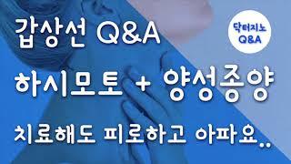 [갑상선/부신피로] 닥터지노 Q&A - 하시모토…