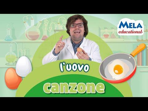 Download L'uovo - Renato lo scienziato canzone Educational  @MelaMusicTV 