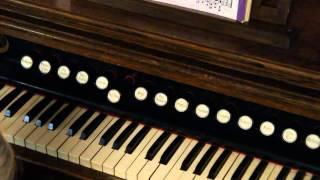 Lyon & Healy Chicago Oak 1895 Theater or Church Reed Pump Organ D-O717