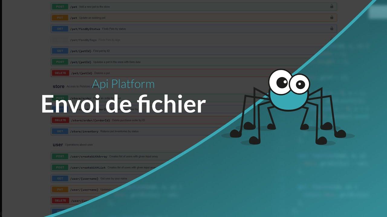 Tutoriel API Platform : Envoie de fichiers