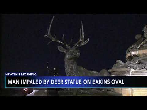 Scott Sloan - VIDEO: Man Recovering After Being Impaled By A Philadelphia Deer Statue