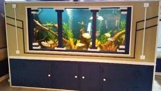 diy 1150 gallon plywood aquarium part 3 update