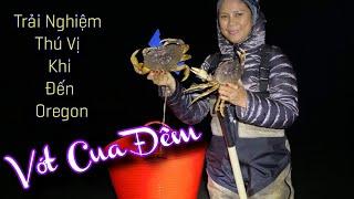 Ban Đêm Cua Bò Đầy Bờ Biển Tillamook Oregon (Cuộc Sống Người Việt Ở Mỹ)#151