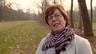 Omroep Brabant Moestuintjes