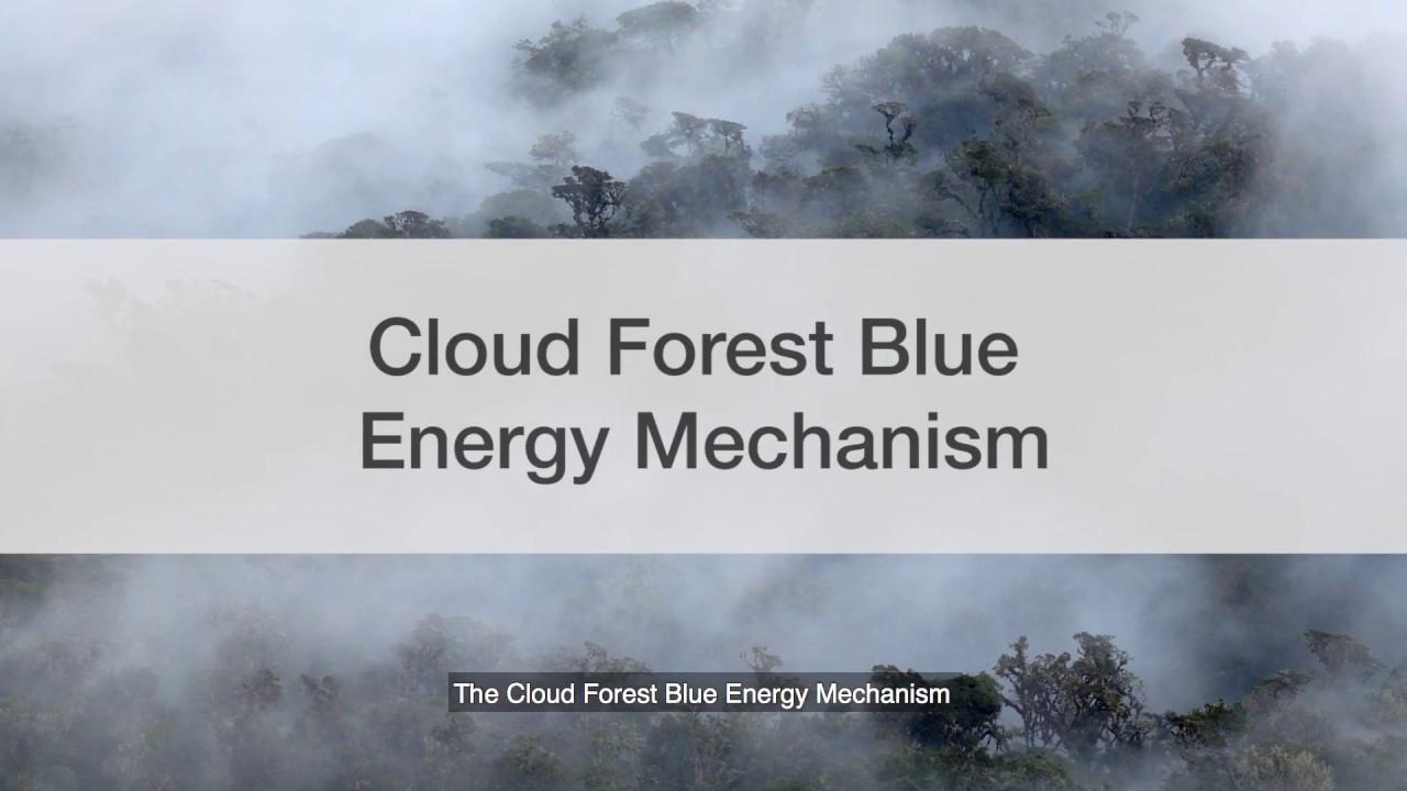 Cloud Forest Blue Energy Mechanism