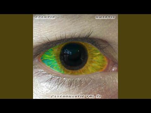 Cpektir & Kh3rtis The Machine Elves (Instrumental Kut) Artwork