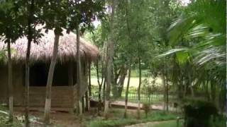 Beautiful Bangladesh Lichibari Eco Cottage Srimangal Bangladesh
