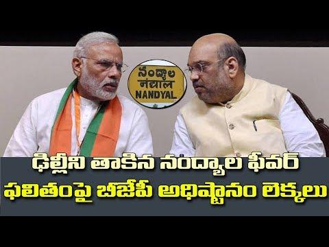 నంద్యాల ఉప ఎన్నికపై ఆరాతీస్తున్న బీజేపీ అధిష్టానం|BJP High Command Focus on Nandyal by election