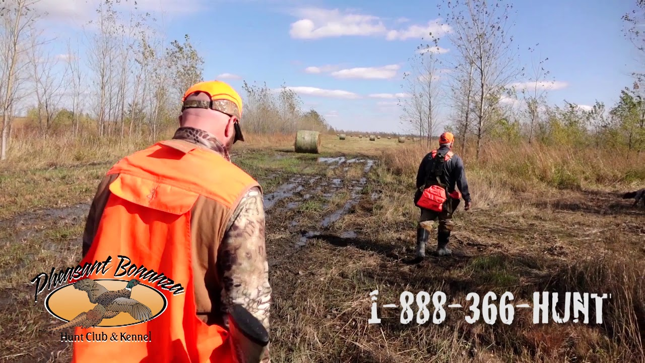 Pheasant Bonanza Hunt Club   Premiere hunting lodge