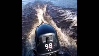 лодка Пингвин Хайди 9,8