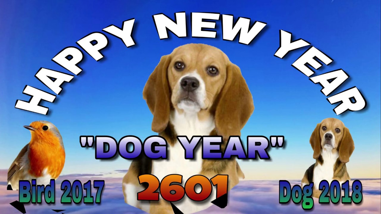 Happy New Year Dog 2018 To Every One On The World Youtube