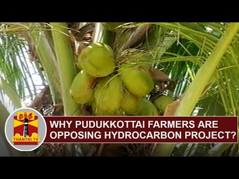 Why Pudukkottai District Farmers are opposing HYDROCARBON PROJECT..?   Thanthi TV