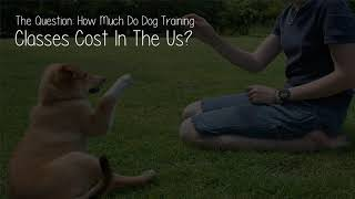 How Much Do Dog Training Classes Cost In The Us?