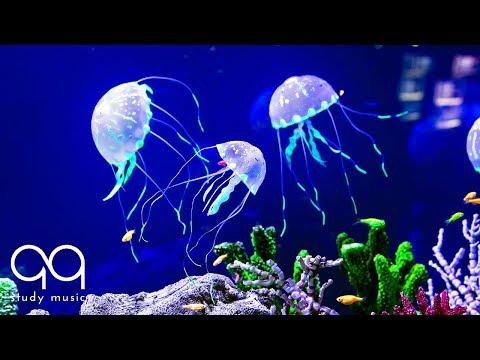Beautiful Aquarium & Deep Focus Music 🔵 Binaural Beats with Underwater Background
