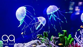 Beautiful Aquarium & Deep Focus Music 🔵 Binaural Beats with Underwater Background