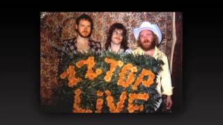 ZZ Top Live Detroit, MI July 10, 1974