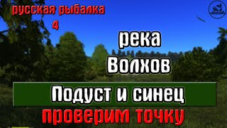 Русская рыбалка 4(рр4) - река Волхов. Подуст и синец. Проверим точку.