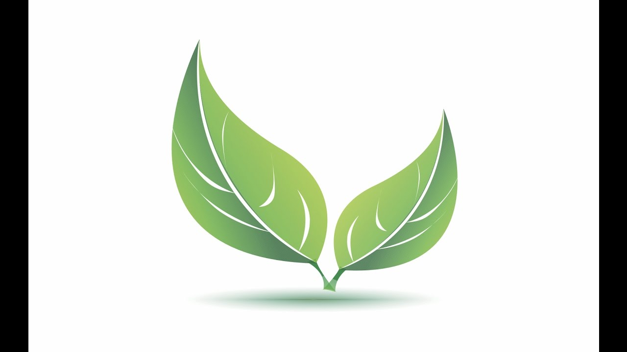 Uncategorized How To Draw Leaf simple leaves with corel draw youtube draw