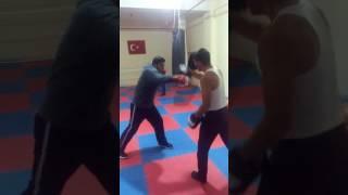 Ahiskali boksör