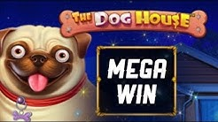 Mega WIN | The Dog House 🐶 | Online Casino by SlotFM | Free Spins