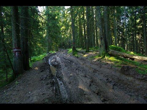 Blending in Forestfloor and Muddy Road - Tutorial