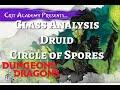 Class Analysis - Druid Circle Of Spores