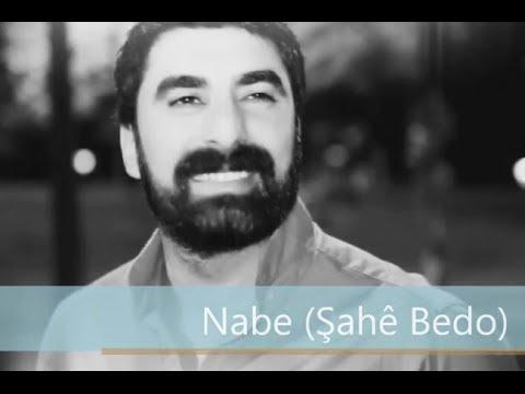 Nabe (Şahê Bedo)