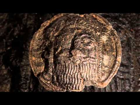 The Great History of Armenia