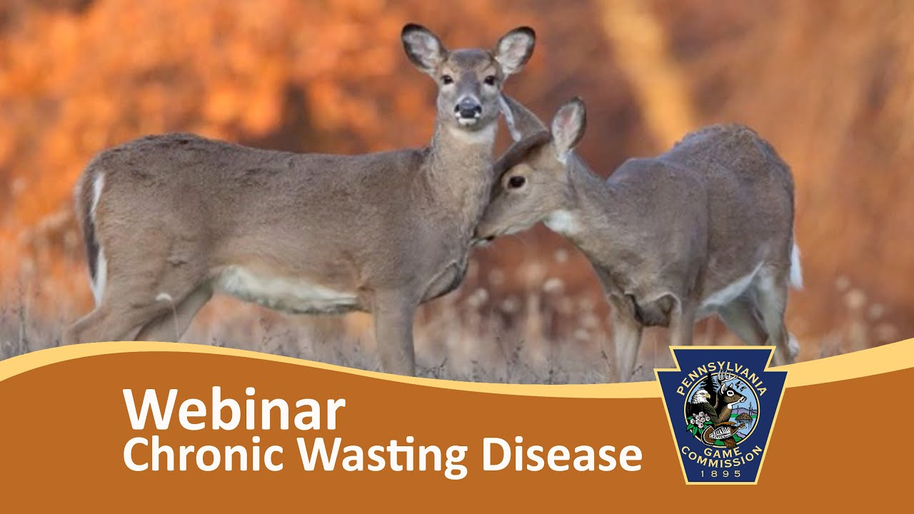 Webinar - Chronic Wasting Disease